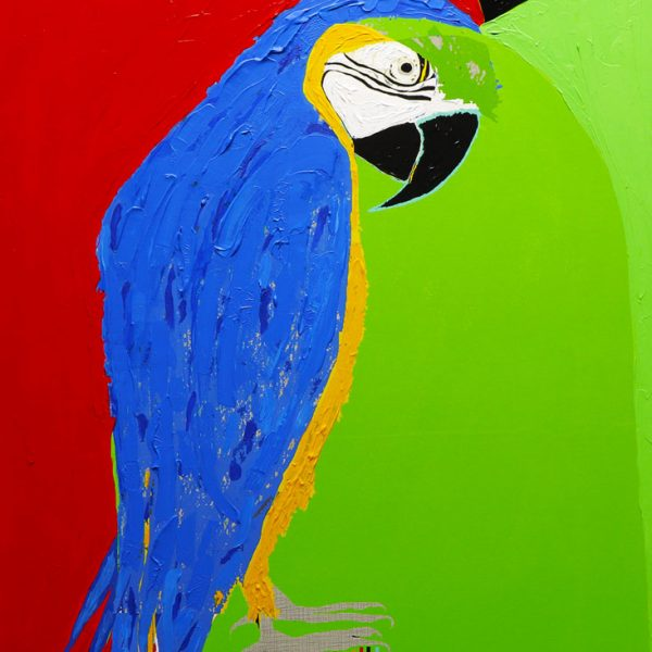 Blue and Yellow Macaw Acrylic and mixed media on wood panel 22 x 30 in / 56 x 76 cm 2019