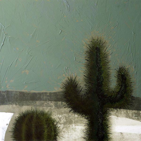 Day Cacti