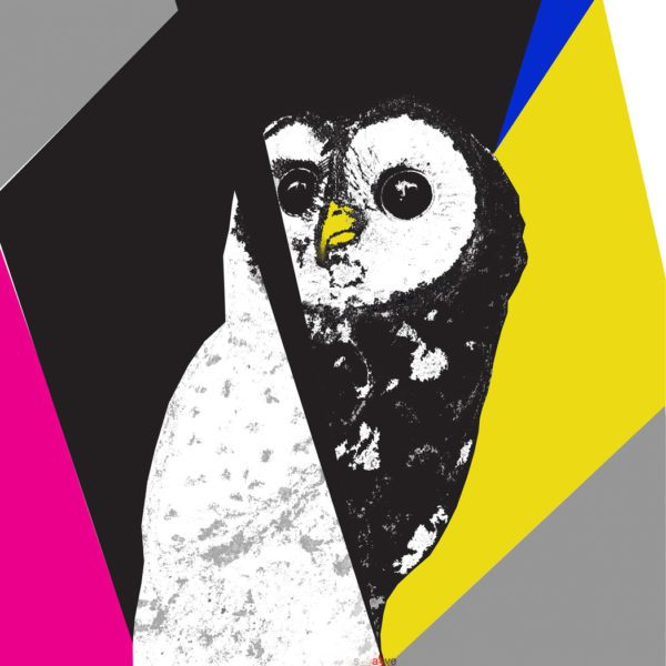 Spotted Owl Limited Edition giclée print 24 x 24 in / 61 x 61 cm Edition size: 50 2016